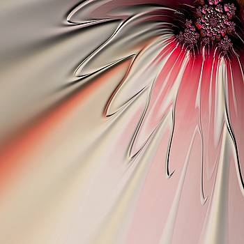 Contemporary Flower by Bonnie Bruno