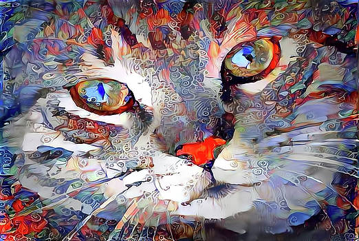 Content Kitty Cat by Peggy Collins