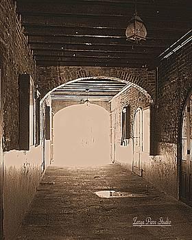 Conti Alley by Zarya Parx  Studio