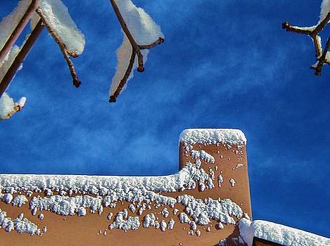 Contrast After the Snow by Diana Dearen