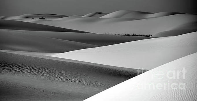 Contrasting Sand by Brian Spencer