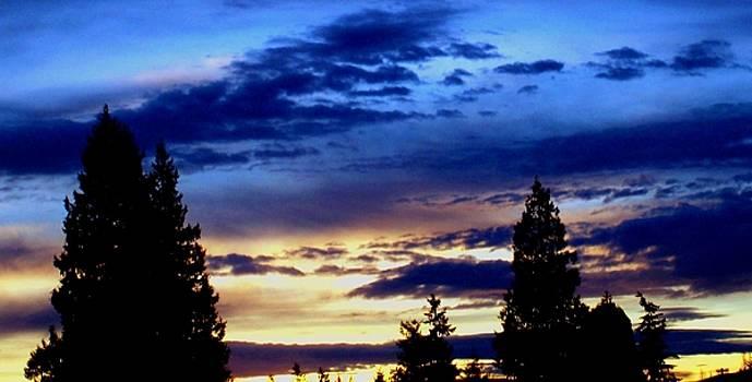 Kevin D Davis - Contrasting Skies