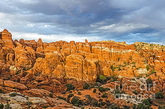 Contrasts in Arches National Park by Sue Smith