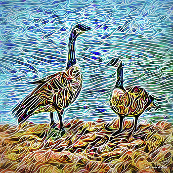 Conversation Of The Geese by Joel Bruce Wallach