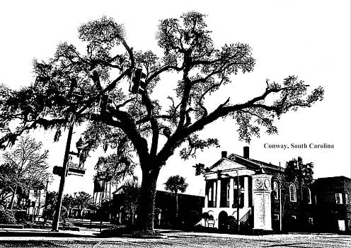 Conway South Carolina Live Oak Downtown Black and White by Joey OConnor