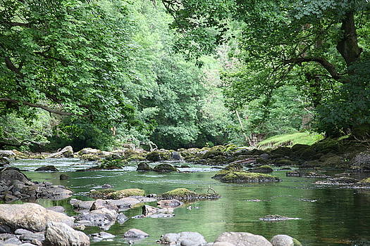 Conwy river near Betws y coed.  by Christopher Rowlands