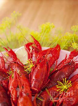 Sophie McAulay - Cooked crayfish