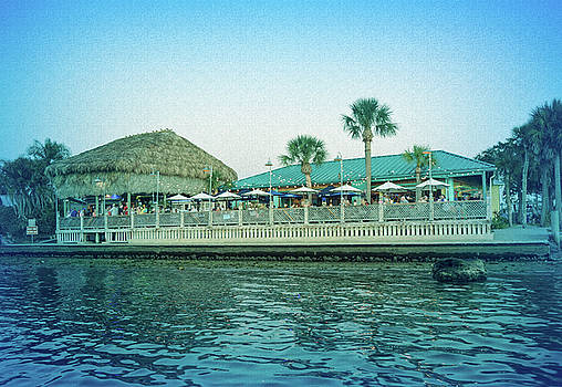 Aimee L Maher ALM GALLERY - Cool Blue Sams on the Gulf