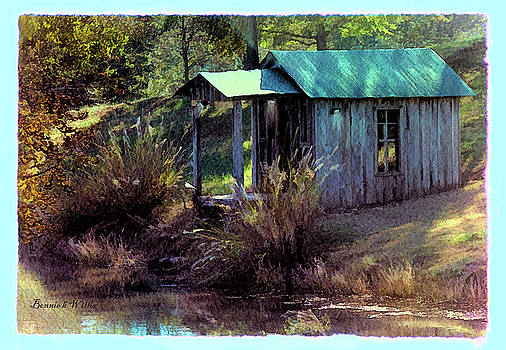 Cool Cabin by Bonnie Willis