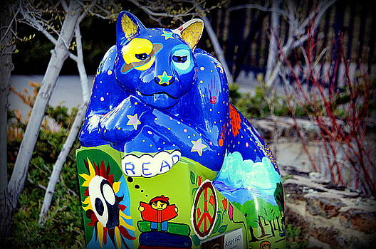Cool Cat by AJ  Schibig