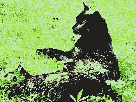 Marla McPherson - Cool Cat