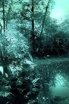 Nina Fosdick - Cool clear water