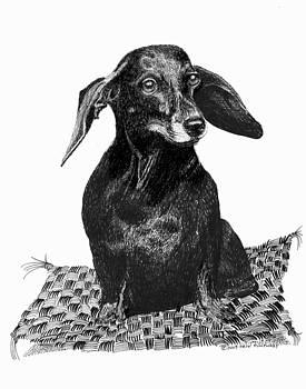Jack Pumphrey - COOL HOT DOG DOG