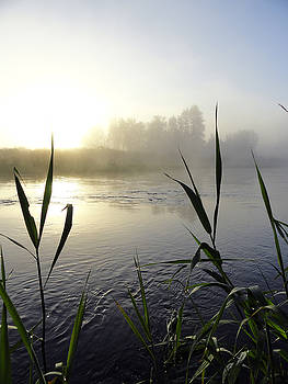 Sue Duda - Cool Riverside Morning