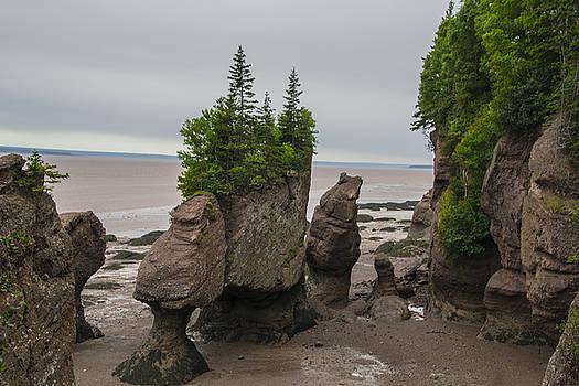 Cool Rocks by Will Burlingham