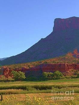 Cool Shadows on Butte by Annie Gibbons