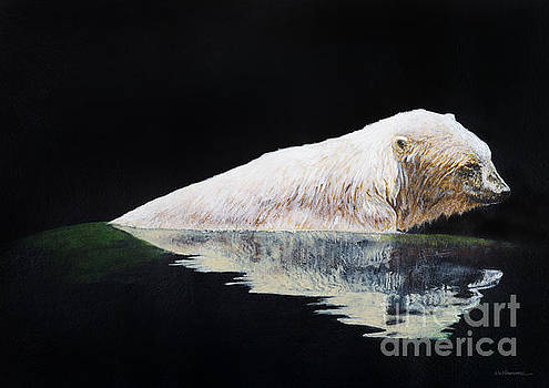 Cooling off-Chinook by Monica Carrell