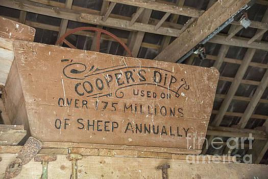Cooper's dip by Patricia Hofmeester