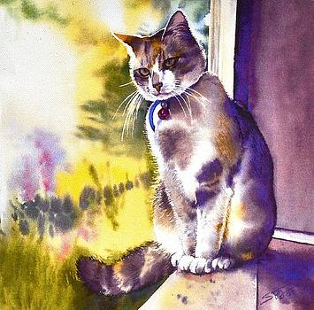 Coops the Cat by Sandra Phryce-Jones