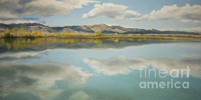 Coot Lake Reflections by Xenia Sease