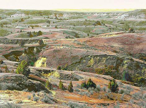 Copper Prairie Reverie by Cris Fulton