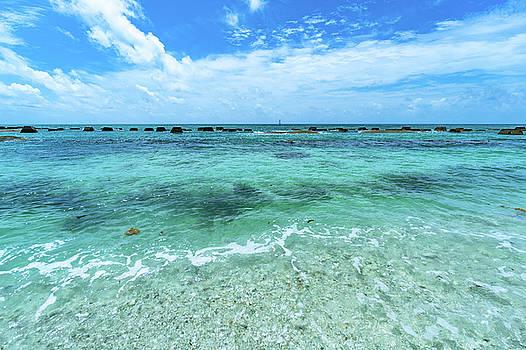 Coral Beach by Matt Spangard