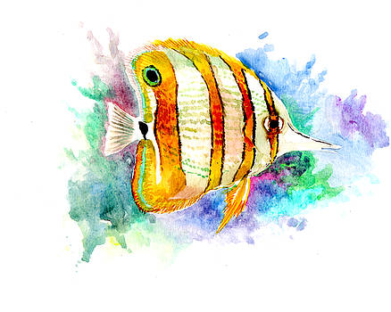 Coral Fish, Angelfish, Aquarium fish art by Suren Nersisyan