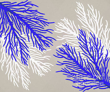 Coral Pattern by Kelley Freel-Ebner