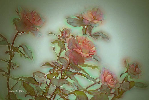 Coral Roses by Bonnie Willis