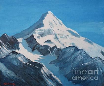 Cordillera de Los Andes by Jean Pierre Bergoeing