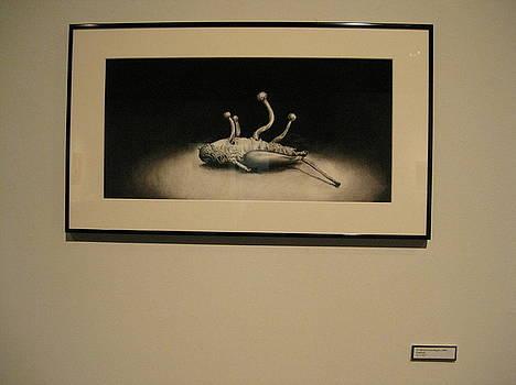 Cordyceps Grasshopper by Sarah Mushong