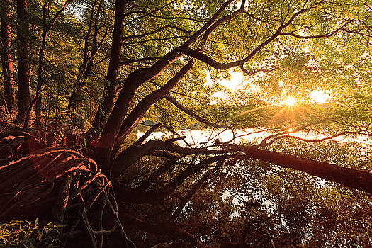 Core Creek Sunset by David Oakill