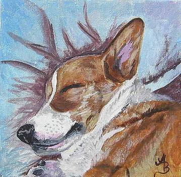 Corgi Dreams by Ann Becker