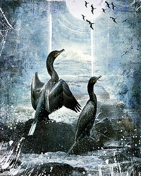 Cormorants by Rebecah Thompson
