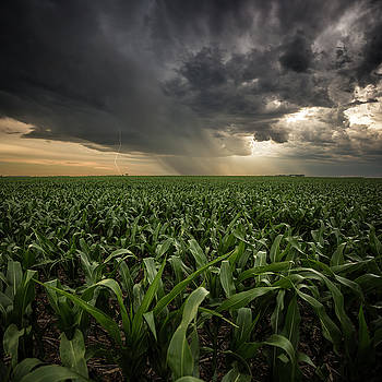 CORN and Lightning by Aaron J Groen