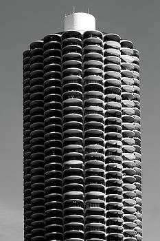 Corn Cob by John Gusky
