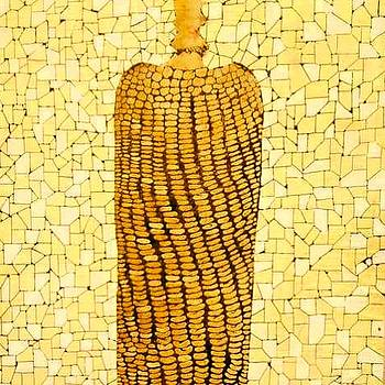 Corn by Emil Bodourov