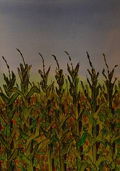 Corn Field in Fall by James Cox