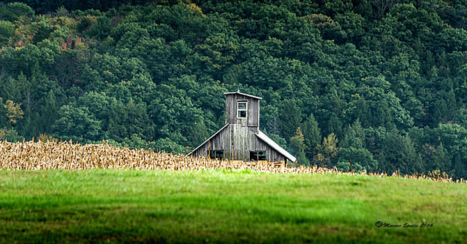 Corn Field Silo by Marvin Spates
