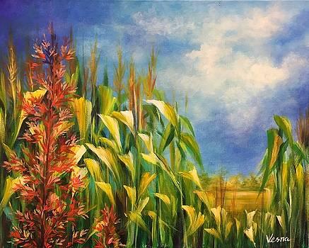 Corn Field by Vesna Delevska