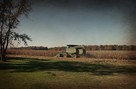Corn Harvest 2015 by Cynthia Lassiter