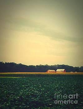 Corn n' Beans by Waverley Manson