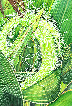 Corn Silk by Lori Taylor