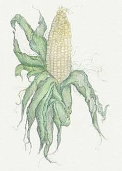 Corn by Tara Poole