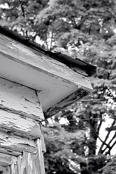 Corner of Roof by Kristi Beers-Mason