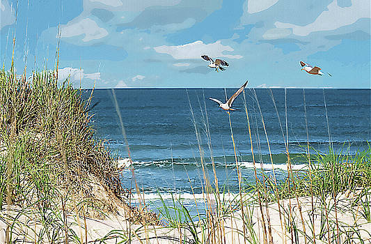 Corolla Beach by Margie Middleton