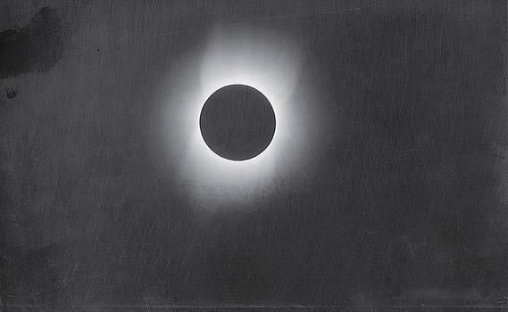 Artistic Panda - Corona of the Sun during a Solar Eclipse