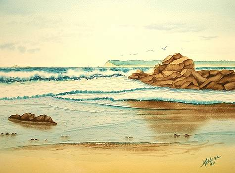 Coronado Beach by Arlene Davidson