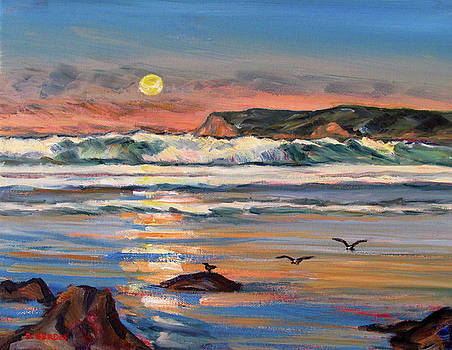 Coronado Beach at Sunset 3 by Robert Gerdes