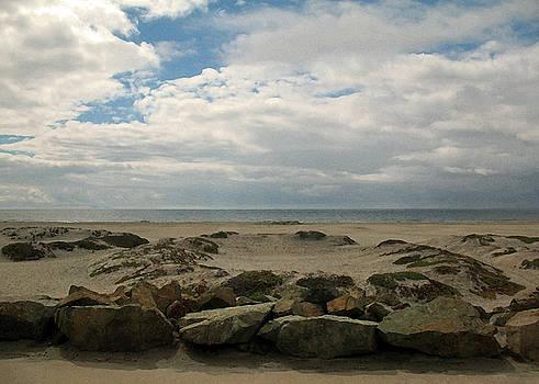 Connie Fox - Coronado Beach